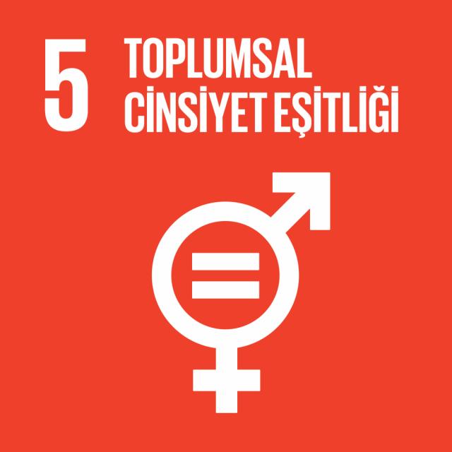 5. Toplumsal Cinsiyet Eşitliği