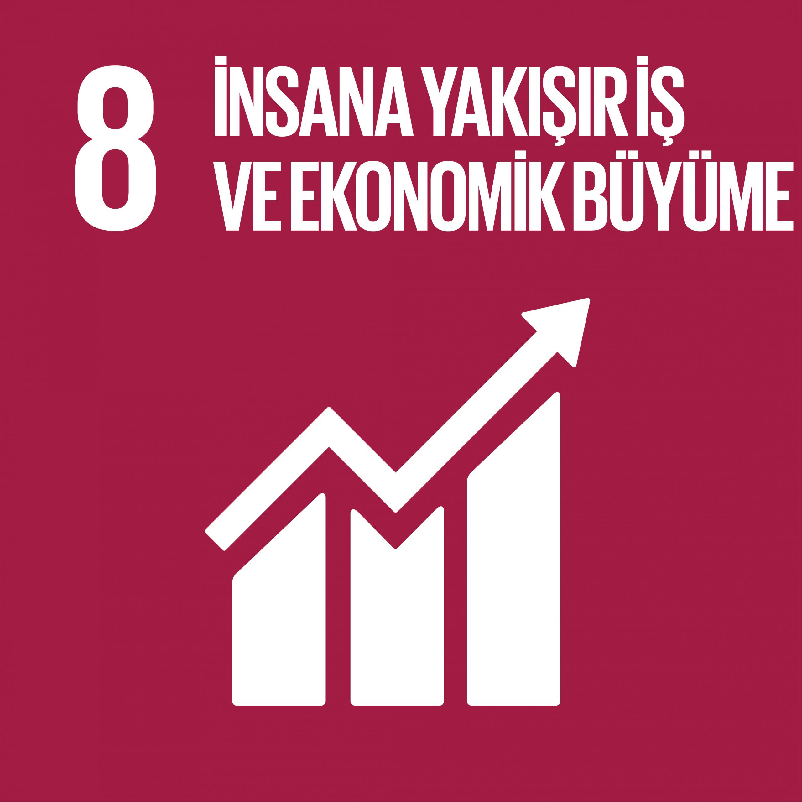 08. İnsana Yakışır İş ve Ekonomik Büyüme